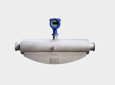 W-CM250S coriolis mass flowmeter