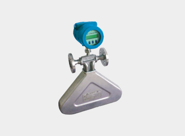 W-CM250T coriolis mass flowmeter