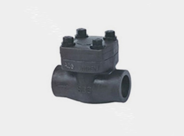 FORGED STEEL LIFT CHECK VALVE